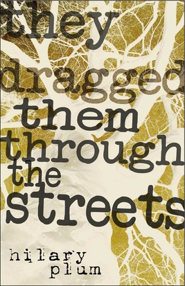 Fjords Review, Review of Hilary Plum's They Dragged Them Through the Streets